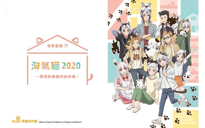 淘氣貓2020:家有圓圓?!我家的圓圓你知道嗎~