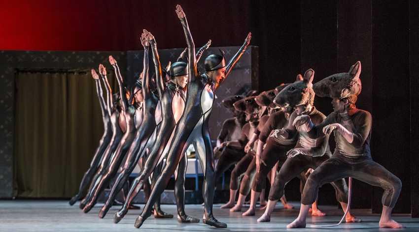 胡桃鉗-捷克國家芭蕾舞團|梅迪奇