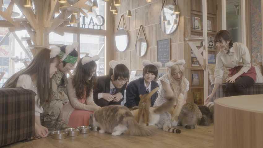 貓咪咖啡廳